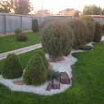Удачное сочетание хвойных растений...
