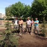 Летний сезон нам не помеха в озеленении! Оздоровительный центр ул. Просторная по г.Оренбургу