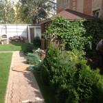 Озеленение ландшафта по ул. Степана Разина