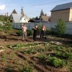 Озеленение дачного участка в п.Пригородный