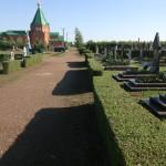 Стриженная изгородь. Кладбище п. Пригородный