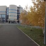 """Лучшее """"ожерелье"""" вокруг спортивного комплекса """"Оренбуржье"""" хвойные и лиственные деревья и кусты, более 20 пород..."""