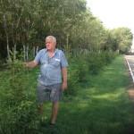 Озеленение детсада «КРОНА», весна 2017 года (стало)